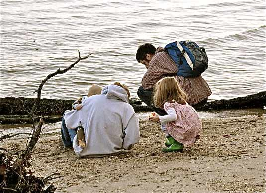 Combers Margaret, Richard, Abby & James, searching for fossil shark teeth, Calvert Cliffs, MD